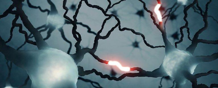 Tipo de sinal nunca visto antes foi detectado no cérebro humano