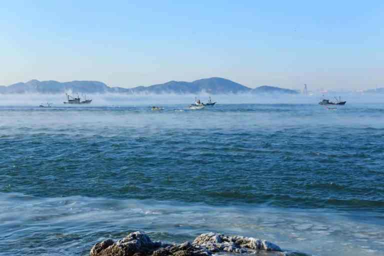 95% da superfície dos oceanos está em vias de mudar para pior