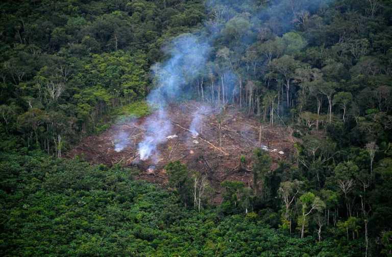"""Segundo 14 mil cientistas os """"sinais vitais"""" da Terra estão piorando rapidamente"""