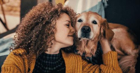 Cachorro4, Fatos Desconhecidos