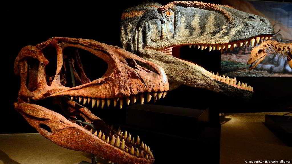 Nem sempre o T. Rex estava no topo da cadeia alimentar