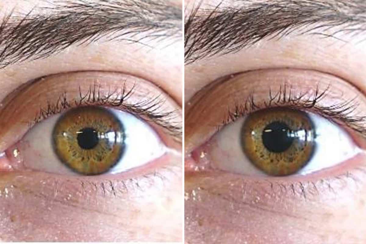 Pupila2, Fatos Desconhecidos
