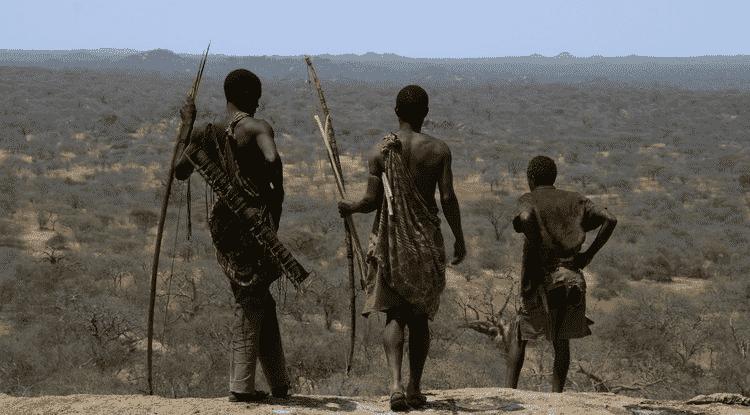 A paisagem do planeta foi mudada até mesmo por pequenas comunidades de coletores
