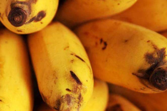 10 alimentos que trazem mais felicidade - estimulam o bem-estar fatos e eventos