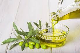 Azeite de oliva ajuda a combater o envelhecimento precoce fatos e eventos (8)
