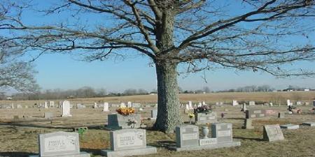 Copperas Springs Cemetery in Guy, Arkansas