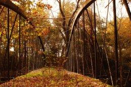 Springfield-Bridge3-10-2007
