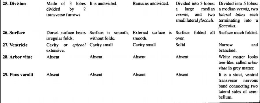 Comparative Account of Brain in Vertebrate