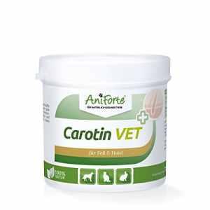 AniForte Poudre de carotène Vet 250g–Produit Naturel pour Animaux–(de qualité ID: 508d 03)