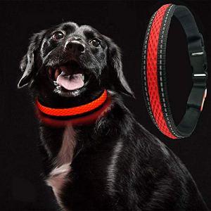 MASBRILL USB Collier de Chien LED Rechargeable Flat Nylon Webbing éclairé Clignotant Dog Collar Lights Collier de Chien LED Light-Up Safety Neck Loop (Red, M)