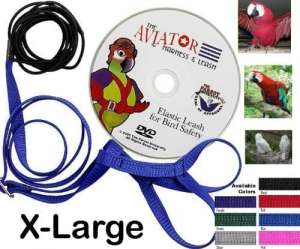 Aviator Harness and Leash X-Large Red by the Parrot University