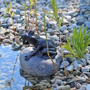 CLGarden Figurine/gargouille pour bassin en forme de grenouille sur une pierre