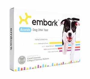 Embark Veterinary Test ADN Dog | Race Identification | 160 Santé Résultats | 200K marqueurs génétiques 1 Paquet Blanc Noir