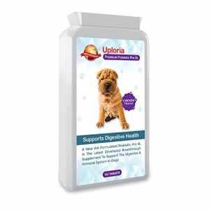 Uploria Pet World Complément Probiotique pour Chien À L'estomac Sensible | 120 Comprimés Goût Poulet | Également Un Complément pour Le Système Immunitaire