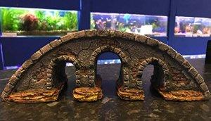 31cm d'arche pont classique Ornement pour aquarium pour Aquariophilie