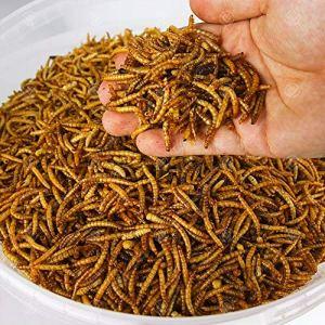5 kg de vers de farine séchés pour oiseaux sauvages