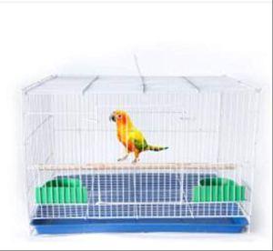 Yorkmoon décoratif Oiseau en métal Cage Starling Pigeon Perroquet 48x33x32cm Blanc