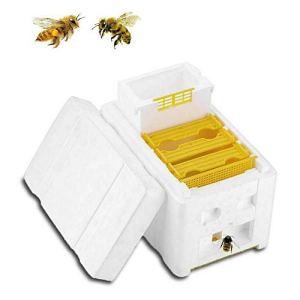 Aotoba Harvest Bee Hive Kie Box Apiculture Reine Élevage DIY Pollination Box Outil pour Jardin Pollination