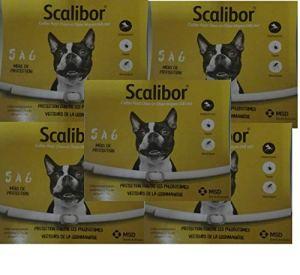 Scalibor 5 Collier antiparasitaire pour Chiens de Petite et Moyenne Taille 48 cm