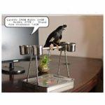 Zengqhui Support d'oiseau Parrot Table Stand Oiseaux Portable Stand Fit sur la Table for Jouer avec l'hôte Beau Travail (Couleur : Silver, Size : 29x24X27cm)