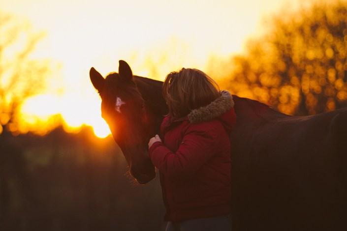 cheval et cavalier au coucher du soleil en bretagne