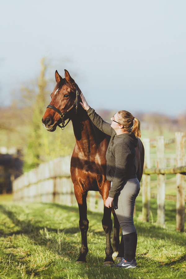 cheval bai et sa cavalière