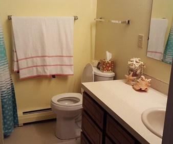Our Bathroom Paint Picks {with before photos}