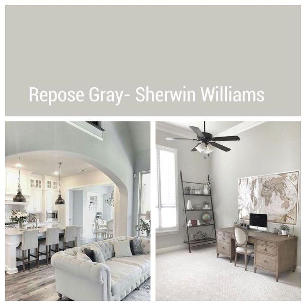Repose Gray by Sherwin-Williams
