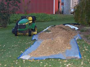 pine-needle-mulch-2-300