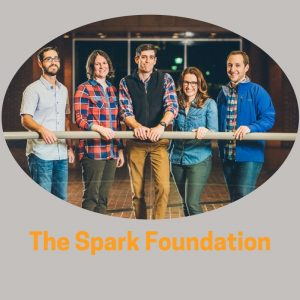 THe Spark Foundation (4)