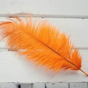 Goldfinch Orange Ostrich Feather Plume