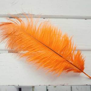 Goldfinch Orange Ostrich Feather Plume