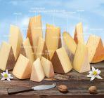 Types of Mifroma Premium Swiss Cheese