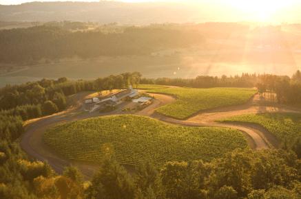 Penner-Ash Wine Cellars