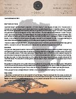 Montana Morrow Prayer Letter: Impacting the World for Christ