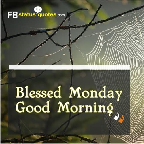 Blessed Monday Good Morning