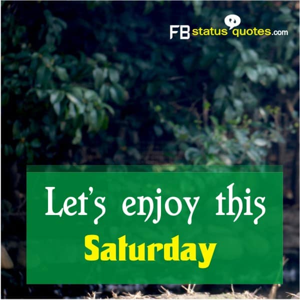 Let's enjoy this Saturday.