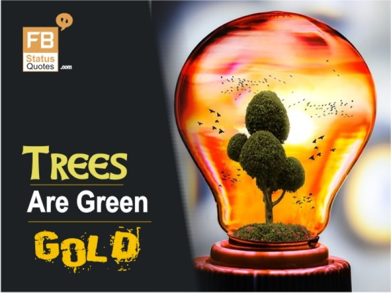 Trees are Green Gold