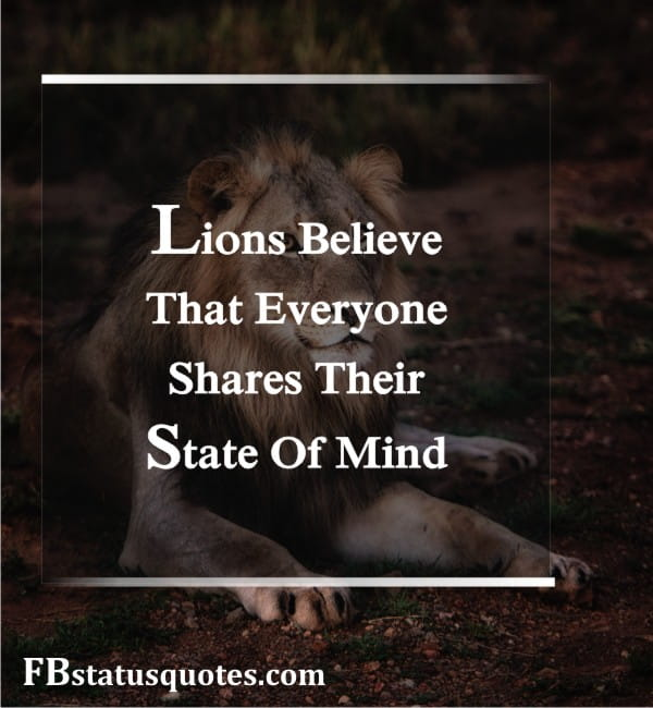Lions Believe That Everyone Shares Their State Of Mind.