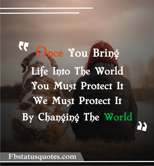 Quotes On Human Rights » Once You Bring Life Into The World