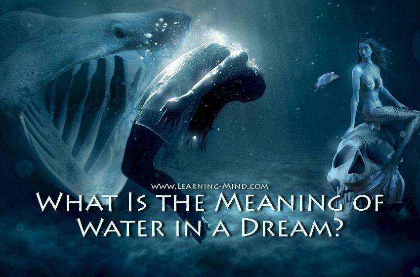水 的 梦想