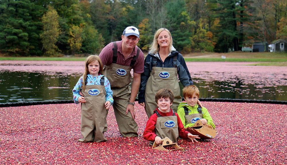 From left, Casey Weston, Liam Weston, Carrie Weston, Callum Weston and Rory Weston at the Ocean Spray cranberry bog behind Bass Pro Shops at Patriot Place on Saturday, Oct. 22. The Weston family won an opportunity to explore the bog and help Ocean Spray cranberry farmers through the Partners in Patriotism newsletter's quarterly sweepstakes.