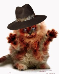 zombie-cat-lily