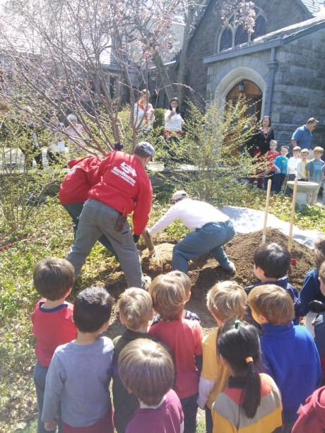 First Church Preschool tree planting 1