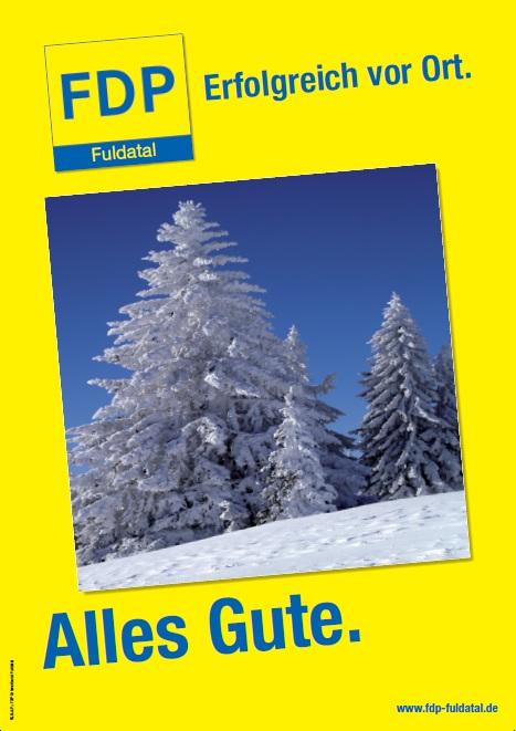 in Die FDP in Fuldatal wünscht Ihnen alles Gute für 2011!
