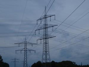 """in Vortrag über die anstehende """"Rekommunalisierung von Stromnetzen"""""""