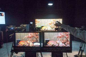 DSC05598-Canon-Studio-HDR-vs-STD-FDTimes