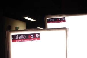 Juliette (after Juliette Binoche) 4x4 and 4x2