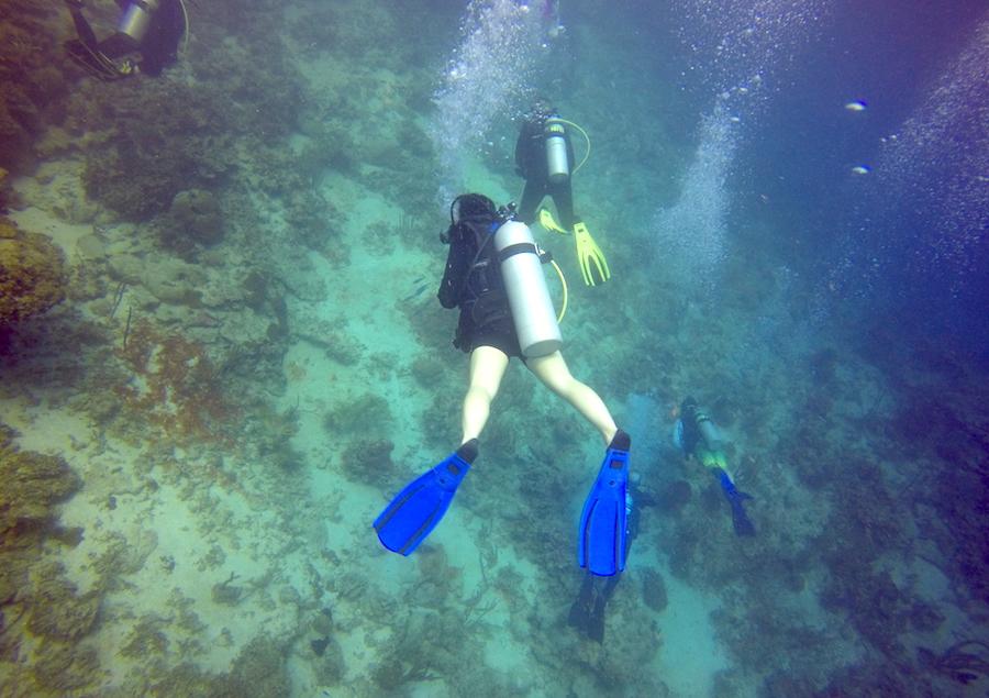 Roatan Honduras Scuba Diving