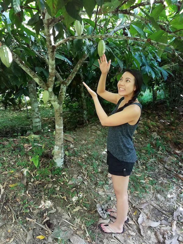 Belize Adventure: Che'il Chocolate Tour